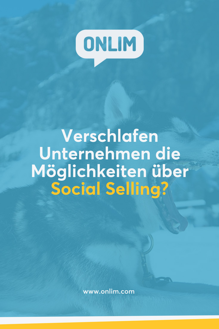Winterschlaf oder Frühjahrsmüdigkeit im Vertrieb? Im Interview mit Social Media Expertin Susanne Hillmer erfährst du mehr über die Möglichkeiten von Social Selling in Unternehmen.
